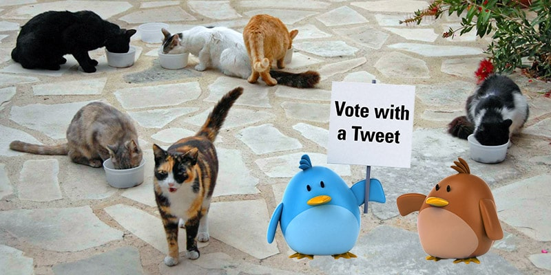 Vote with a Tweet
